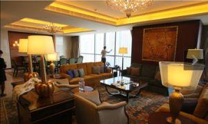 Hotel Living Room Sofa Set/Modern Hotel Sofa/Star Hotel Sofa (GLNS-001001) pictures & photos