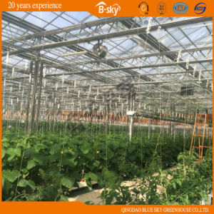 Auto environment Control Glass Greenhouse with Mobile Seeding Bed pictures & photos