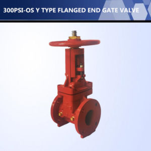 UL FM Listed 300psi OS&Y Type Flanged End Gate Valve pictures & photos