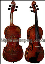 Violin (MV007-2)