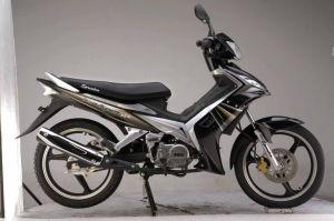 Cub/ Motorcycle/Cub Motorcycle (SP110-14)
