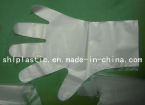 EVA Gloves (SHL04)
