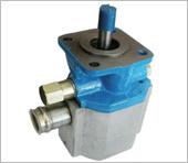 Log Splitter Pump