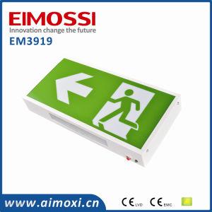 Europe Standard Exit LED Emergency Light Exit Sign