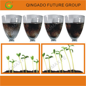 Soluble Humic Acid Chelated Iron Organic Fertilizer pictures & photos