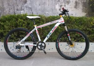 1.8d Aluminum Alloy Moutain Bicycle Made in China pictures & photos