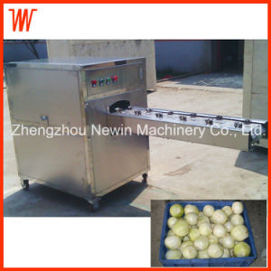 500kg/H Stainless Steel Onion End Cutting Machine pictures & photos