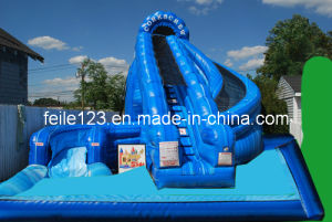 Inflatable Water Slide with Pool, Inflatable Water Slide (FL-S225)