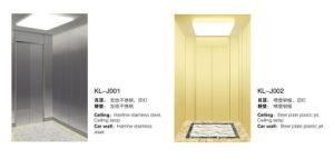 Klj Home-Use Elevator