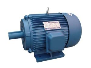 Three-Phase Induction Motor (Y) pictures & photos