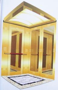 Villa Elevator/Small Elevator for Homes