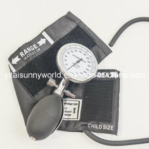 Palm Type Blood Pressure Monitor (SW-AS27) pictures & photos