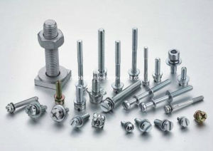 Stainless Steel Hex Bolt pictures & photos
