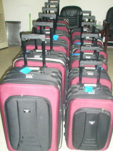 Skd Luggage (ET029) pictures & photos