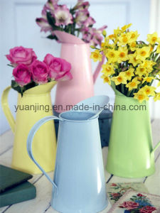 Flower Pots/Watering Can in Different Colors pictures & photos