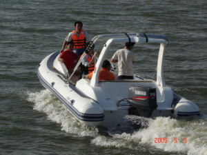 7.3m Rigid Inflatable Boat 730c- European Design Styles pictures & photos