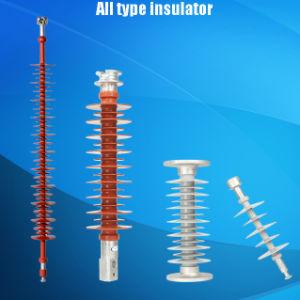 Insulator pictures & photos