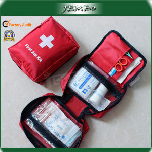 Easy Carry Car Travel First Aid Kit/Medical Bag pictures & photos