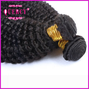 Quercy Hair 8A Grade New Arrival Afro Kinky Curl Brazilian Human Hair pictures & photos