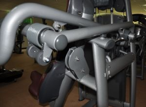 Technogym Commercial Gym Equipment Chest Press (BFT2008) pictures & photos