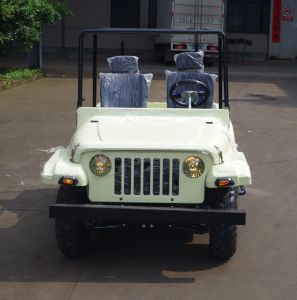 Yongkang Factory Selling Cheaper Racing Go Kart (JY-ATV020) pictures & photos