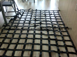 Cargo Lashing Net/Cargo Net/Truck Cargo pictures & photos