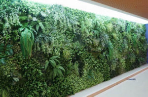 High Quality Artificial Plants and Flowers of Green Wall Gu-Wall316889092008066 pictures & photos