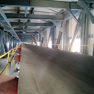 Long Conveying Distance Stationary Fixed Belt Conveyor Manufacturer pictures & photos