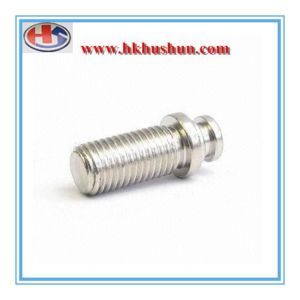 Turning Part for CNC Process Screw (HS-TP-004) pictures & photos
