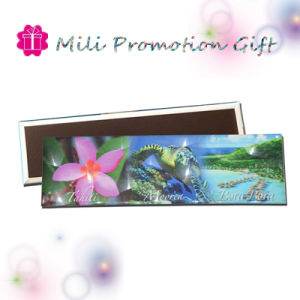 Good Price SGS Mark High Quality Handwork Factory Tin Magnet pictures & photos