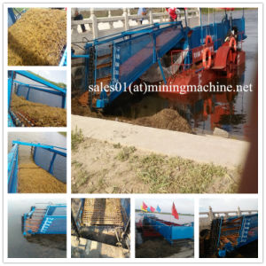 Weed Cutting Ship Aquatic Weed Harvester Ship pictures & photos