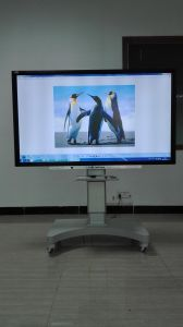 55 Inch Mutil Touch Screen Panel for Meeting
