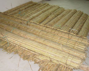 Always Green, 100% Eco Friendly Bamboo Fence pictures & photos