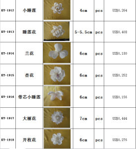 Plant Sola Flower &Dried Flower pictures & photos