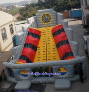 Less Maintenance Inflatable Game for Commercial Show and Trade Show (A493) pictures & photos