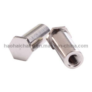 Customized Metal Stainless Steel Hex Head Bolt for Auto Part pictures & photos