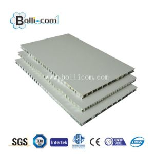 Polyester Coated Aluminum Honeycomb Panel pictures & photos