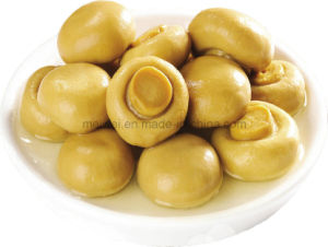 Health Food Canned Mushroom Whole Naturally pictures & photos