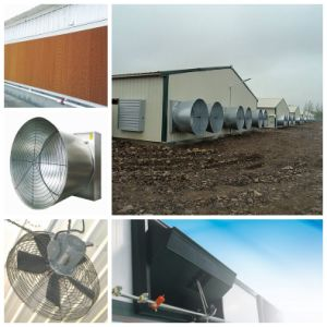 Prefabricated Steel Structue Designed Poultry Farm House pictures & photos
