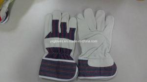 Cowhide Glove-88p Glove-Work Glove-Hand Glove-Labor Glove pictures & photos