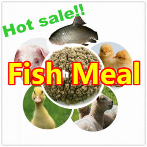 Animal Feed Protein Fish Meal with Lowest Price pictures & photos