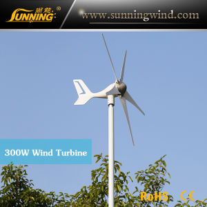 300W Mini Size Max Power Wind Power Electricity Generator