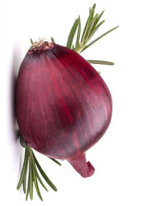 2016 Good Tasty Fresh Onion pictures & photos
