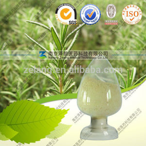 Ursolic Acid Natural Antimicrobial Agent for Cosmetics Whitening Extract pictures & photos