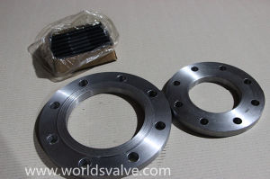 Stainless Steel Flange (P32)