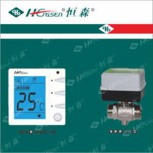 Wks-03c Thermostat/Temperature Controller/Digital Thermostat/HVAC Controls Products pictures & photos