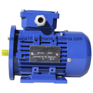 Y2 Series 3-Phase Electric Motors for Industry with ISO pictures & photos