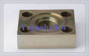 SAE Flat Flanges with 6162 Code pictures & photos