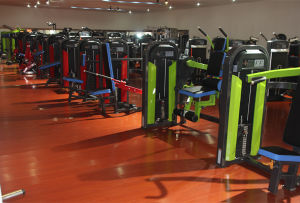 Gym Equipment Fitness Equipment for Power Cage (NHS-2008) pictures & photos