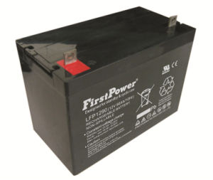 UPS Battery (LFP1290) pictures & photos
